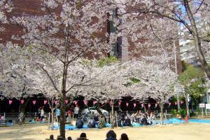 Shin-machi-Park_1004-28.jpg