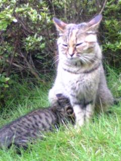 chiimama & her baby