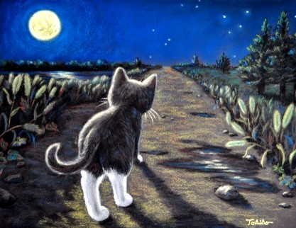 mimi moon light walk