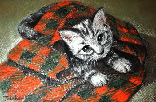 painting Xmas blanket