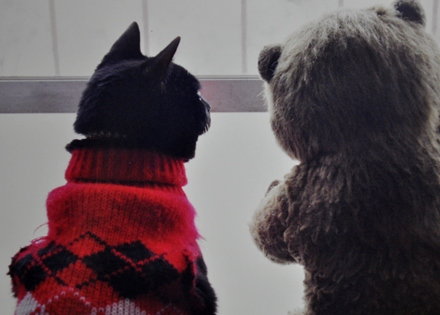 mimi  mico watching snow2