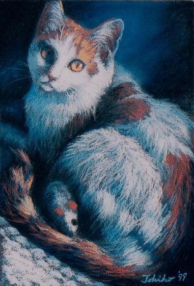 maronlike cat w cc