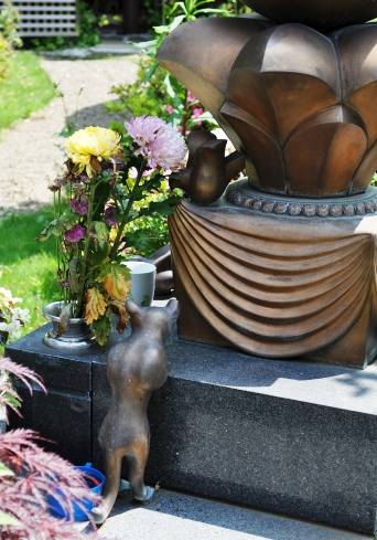 gravestonecatback.jpg