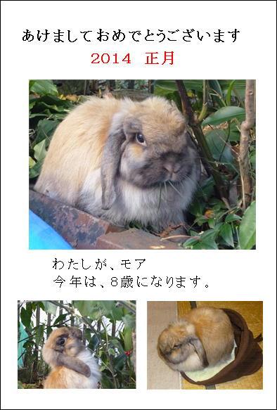 2014モアブログ年賀状JPG