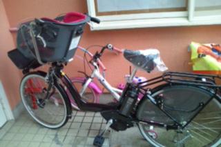 自転車来たー