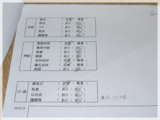 P1100869.jpg