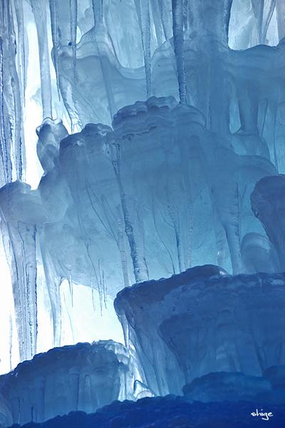 西湖「樹氷-115