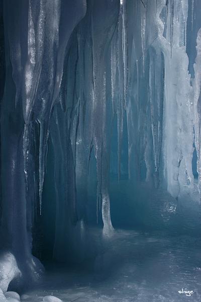 西湖「樹氷-77
