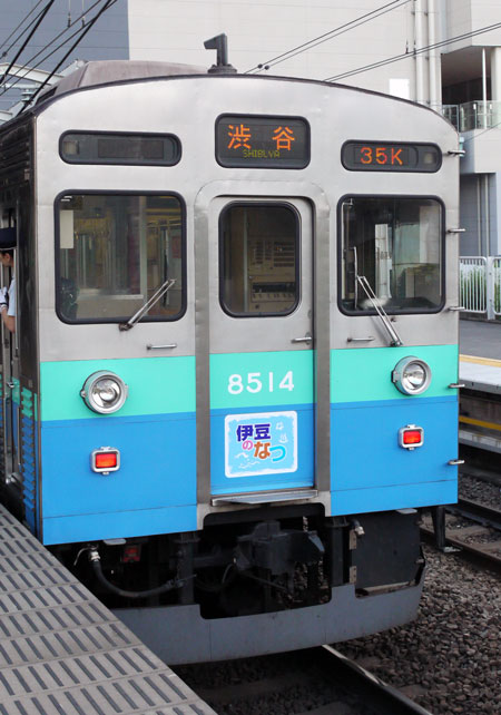 P1110034.jpg