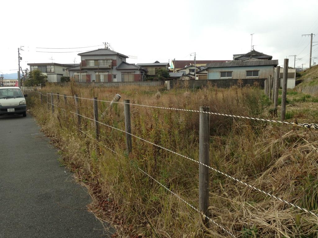 福岡市 草刈り