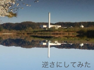 DSC_0319_.jpg