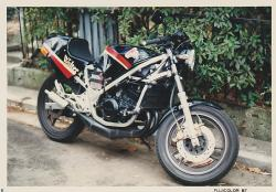 RG250