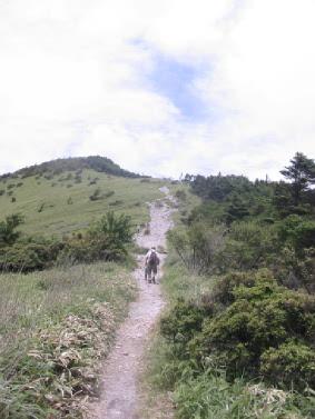 鷲ヶ峰 のぼり