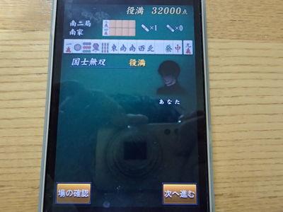 PA290395.jpg