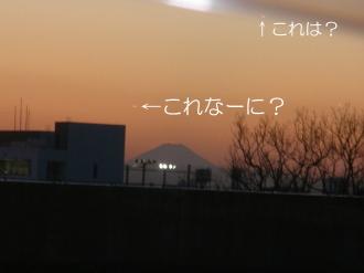 P2130711.jpg