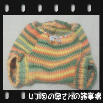 2011010521160001.jpg