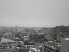 翌朝は雪・・・