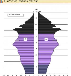 人口ピラミッド_H32/2020