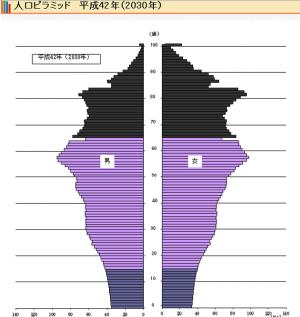 人口ピラミッド_H42/2030