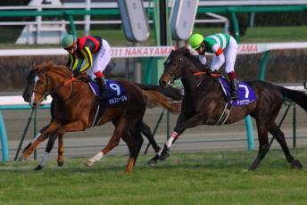 2011有馬