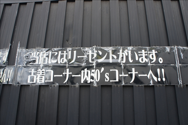 DSC07515.jpg