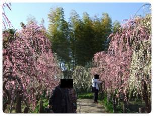2011_0306福井遠征1474