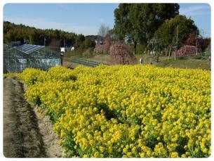 2011_0306福井遠征1407