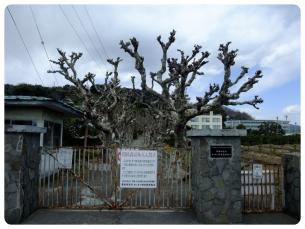 2011_0326福井遠征0595