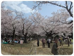 2011_0409福井遠征0698