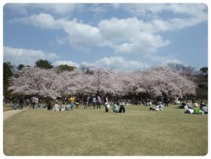 2011_0409福井遠征0694