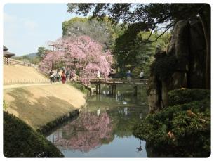 2011_0409福井遠征0765