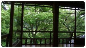 2011_0504福井遠征0091