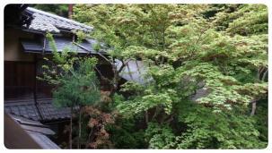 2011_0504福井遠征0088