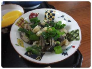 2011_0508福井遠征0606