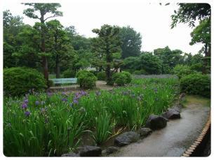 2011_0528福井遠征0620