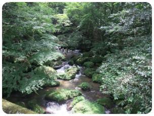 2011_0702福井遠征0533