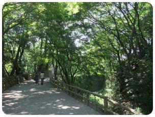 2011_0702福井遠征0511