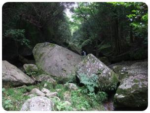 2011_0702福井遠征0565