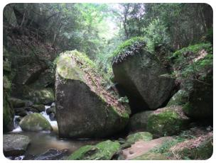 2011_0702福井遠征0558