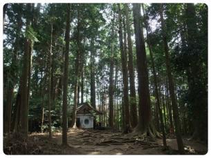 2011_0807福井遠征0647