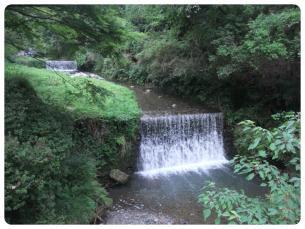 2011_0807福井遠征0698