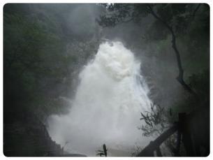 2011_0905福井遠征0681