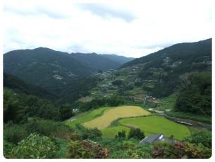 2011_0920福井遠征1144