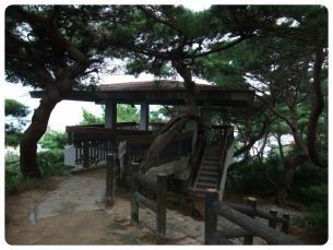 2011_0920福井遠征1034