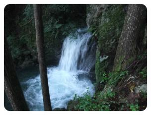 2011_0920福井遠征1372