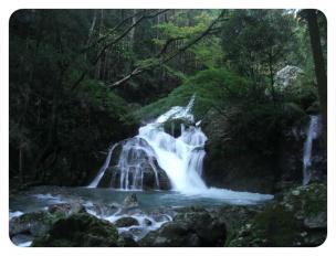 2011_0920福井遠征1362