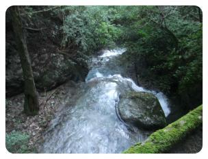 2011_0920福井遠征1383