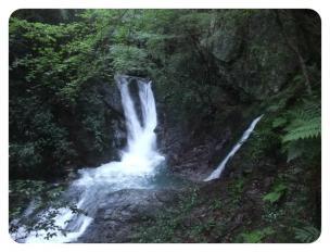 2011_0920福井遠征1387