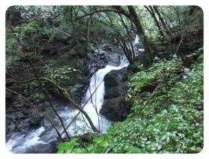 2011_0920福井遠征1471