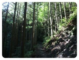 2011_0920福井遠征1462